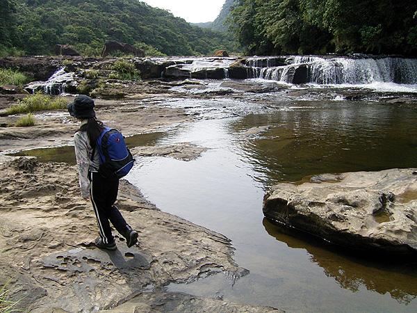 060902浦内川に沿って歩く