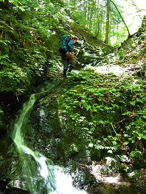 070616ヒヤマゴ滝1