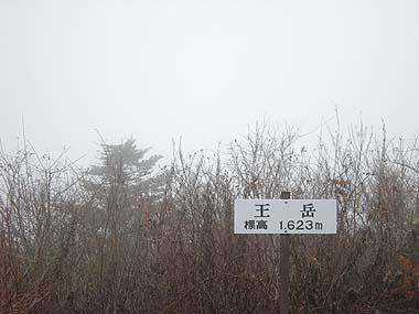 081129王岳