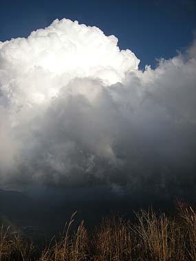 081129積乱雲