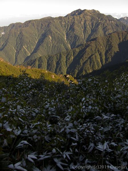 110924早付き尾根から朝の猫又山