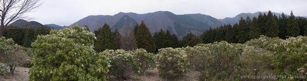 120407丹沢・シダンゴ山山頂から歩いた山々