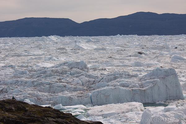 120813アイスランド、グリーンランドの旅・海を眺める人