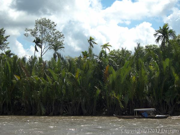 121118ベトナム・椰子の茂る島