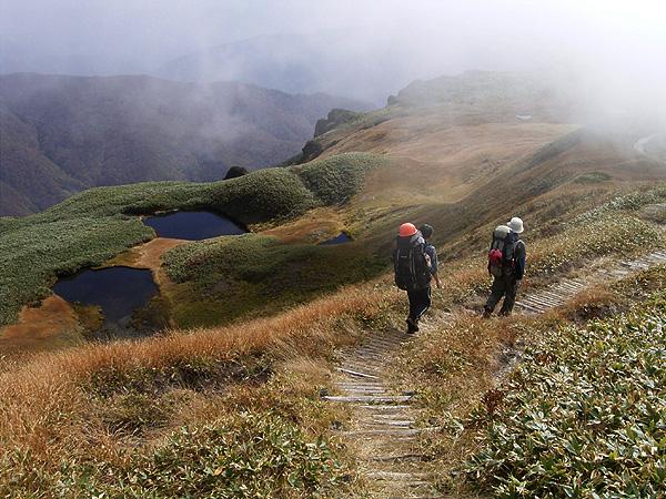 061015朝日岳の湿原、朝日ヶ原