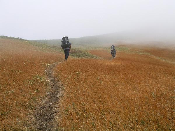 061015大烏帽子岳稜線の草原