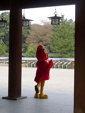 071110橿原神宮