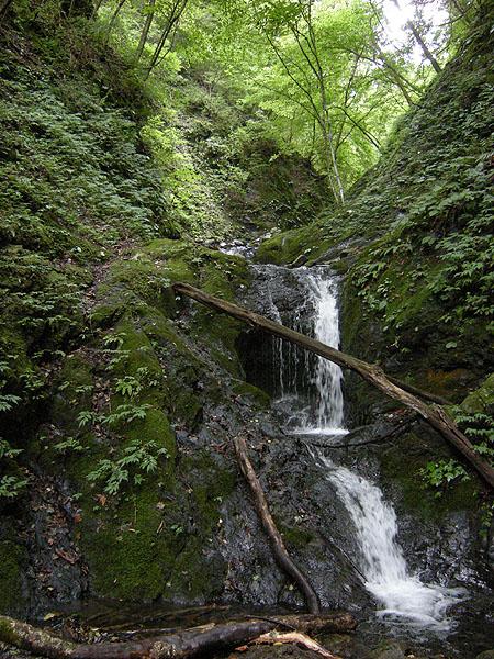 100919シダクラ沢・ハング滝