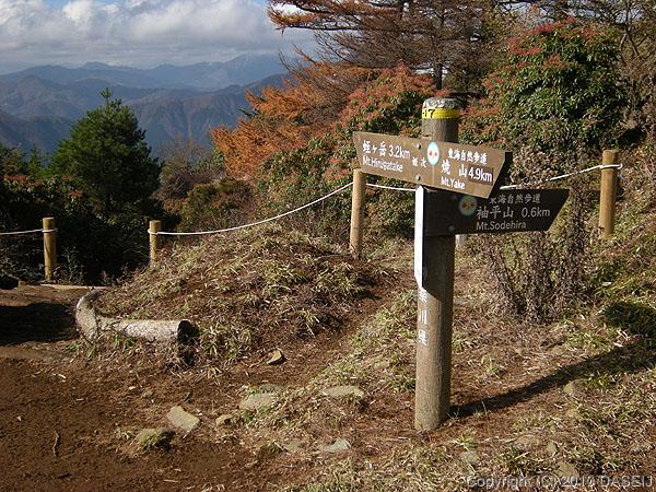 101121姫次から東海自然歩道を離れる