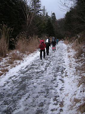 101218赤岳鉱泉へ林道を歩く