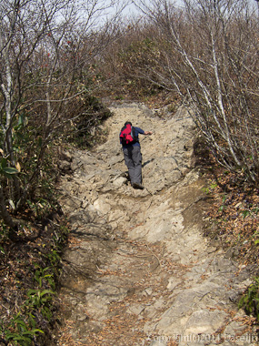 111104谷川岳・熊穴沢避難小屋の先の急登