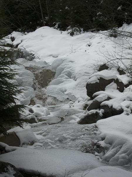111227八ヶ岳・沢も凍っている