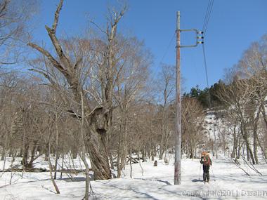 120428平ヶ岳・電線に導かれ山ノ鼻へ