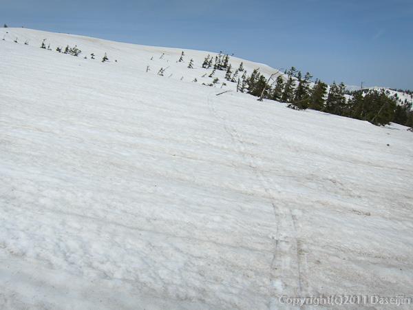 120429平ヶ岳・ススヶ峰山頂湿原