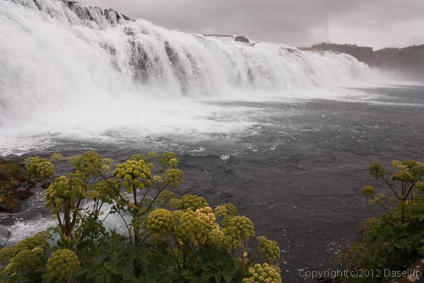 120805アイスランド、グリーンランドの旅・小さな滝
