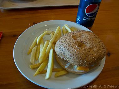 120806アイスランド、グリーンランドの旅・Vikで昼食