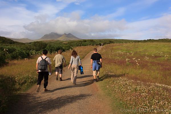 120806アイスランド、グリーンランドの旅・尾根の上は広い道