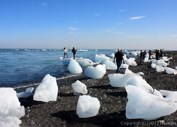 120807アイスランド、グリーンランドの旅・ヨークサゥルロゥンの海岸