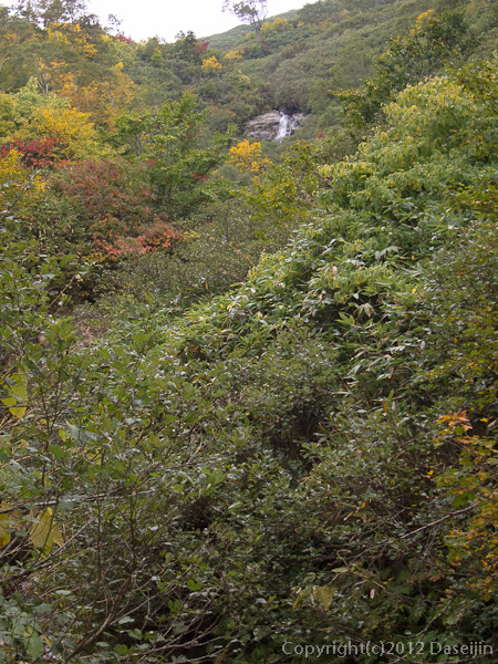 121007恋ノ岐・大ナメ滝が見える